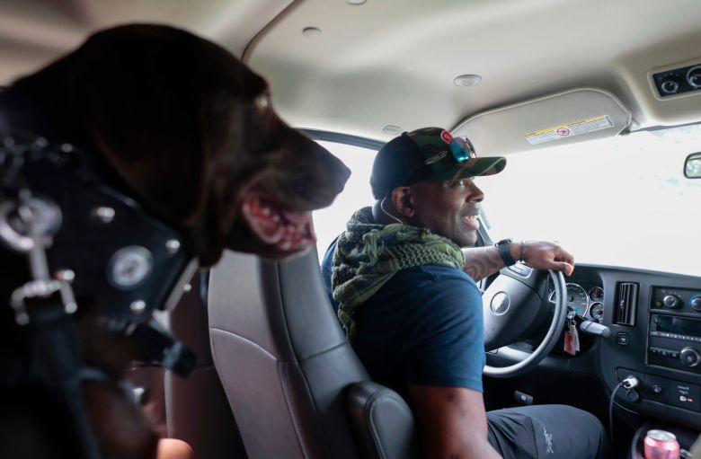 A man driving with a big dog sitting in the back seat.