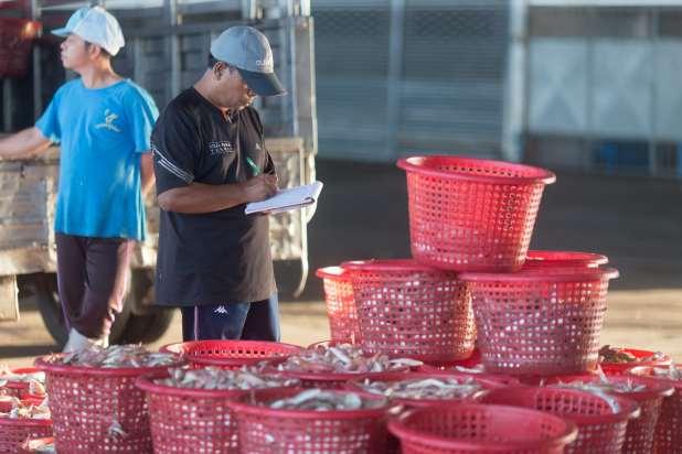 Man checks fishing haul