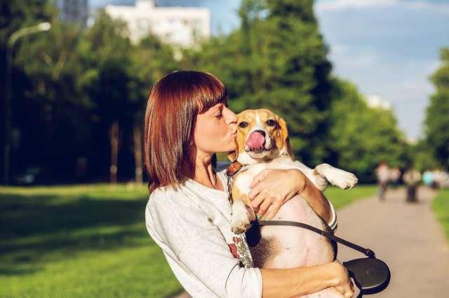 Owner kissing dog