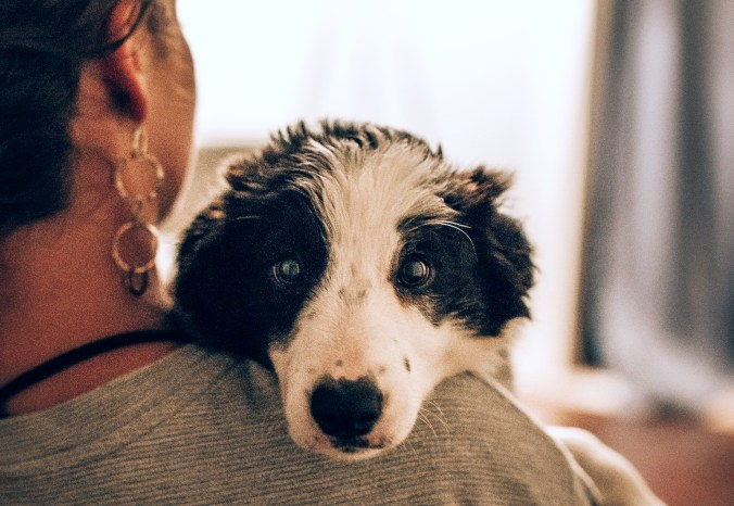 A woman holds a dog