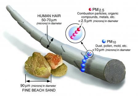 Illustration of the size of PM2.5 compared to a human hair and grain of sand.