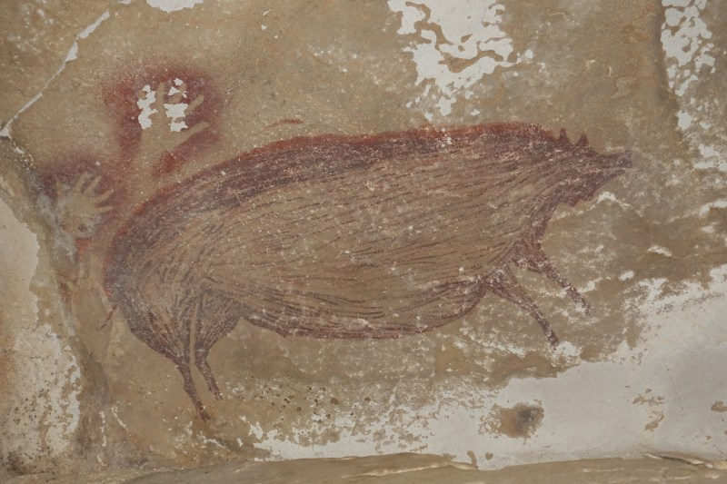 A closer image of one of the wild pigs and two hand stencils
