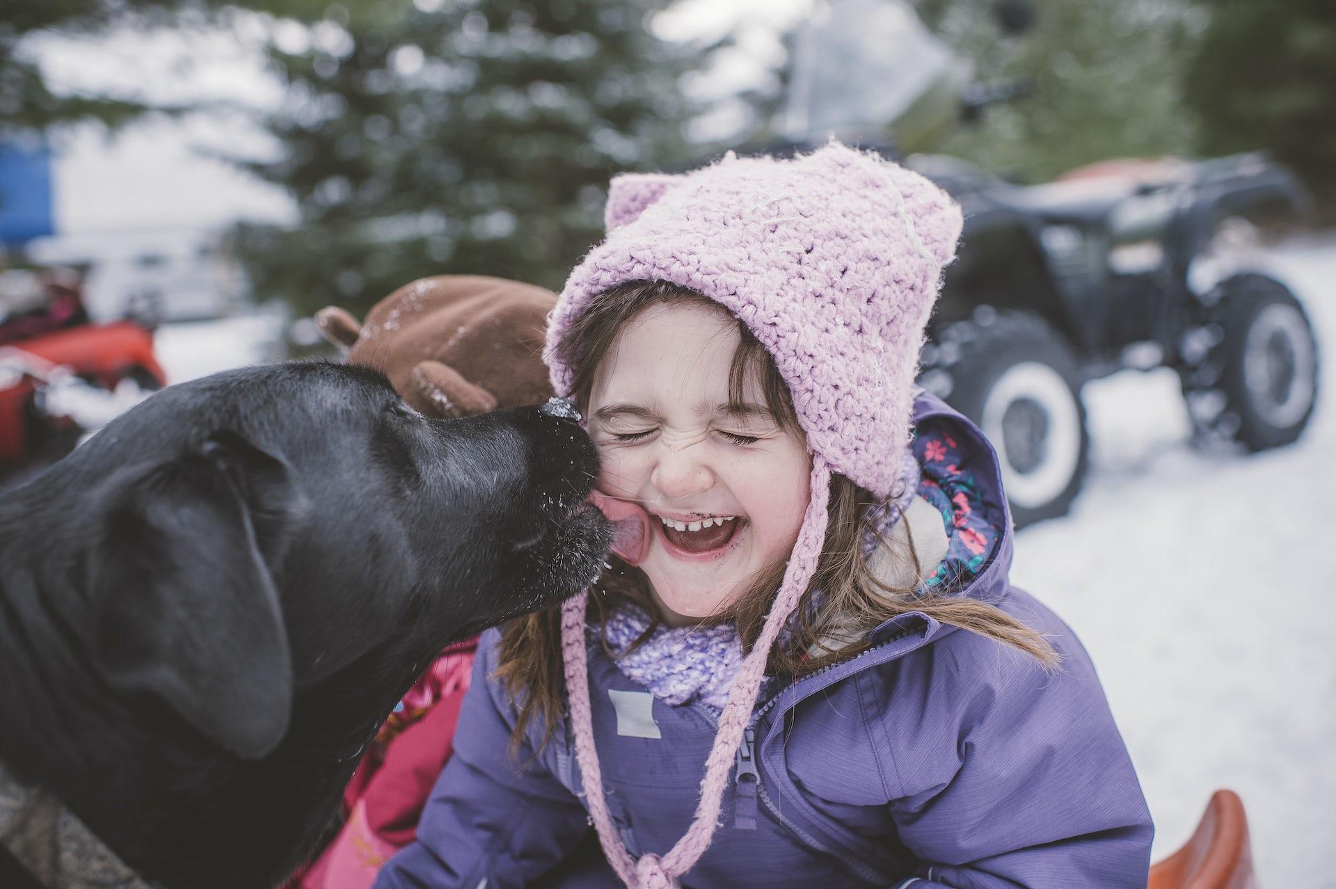 Un perro le lame la cara a una niña.