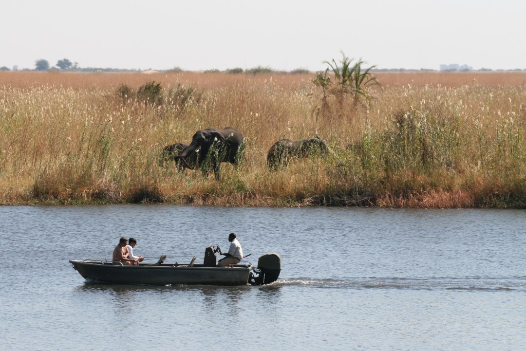 Paradox lost: Wetlands can form in Deserts A boat sails past dry grassland with elephants.
