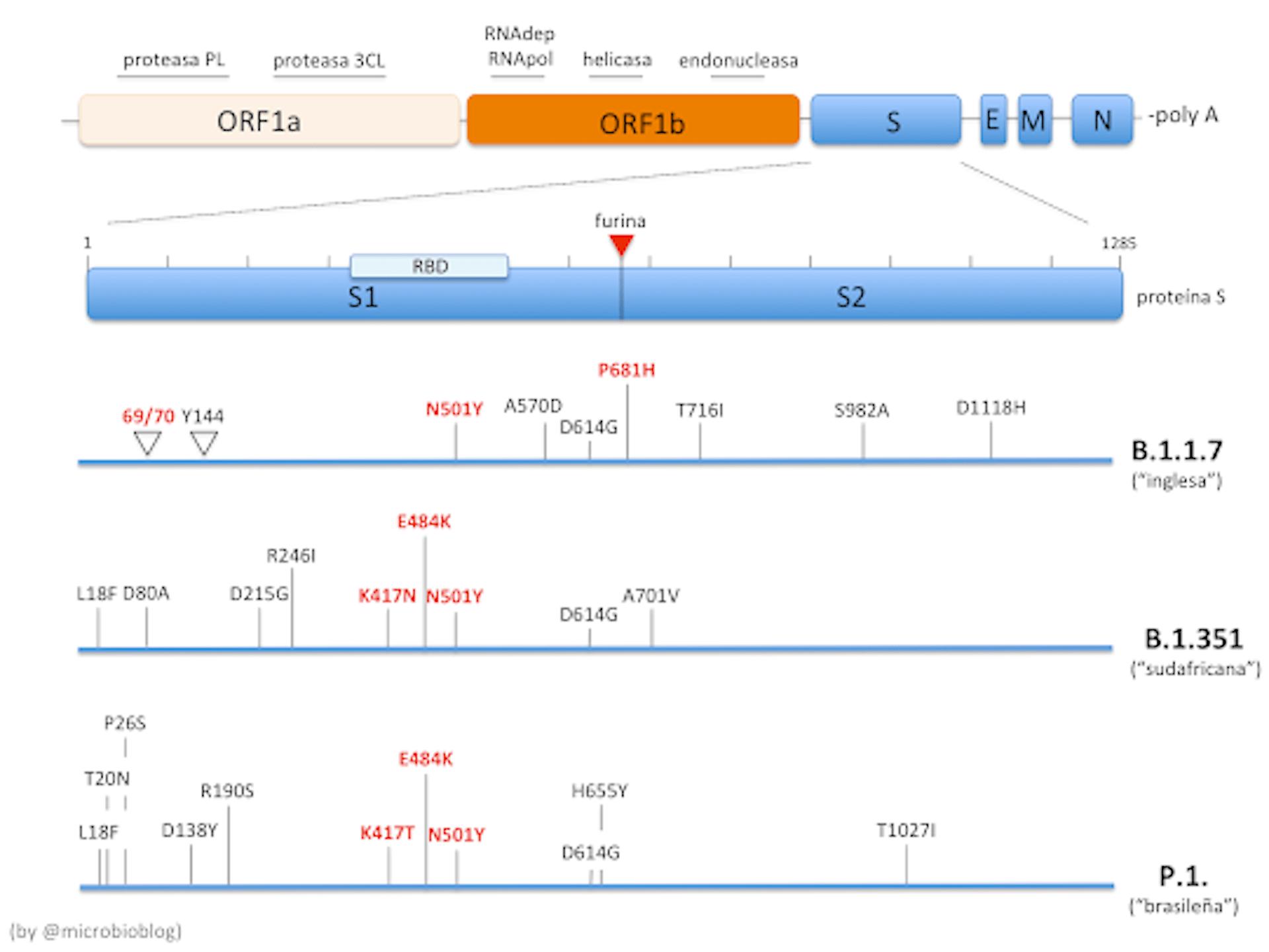 file 20210205 15 1pcmwn5.png?ixlib=rb 1.1