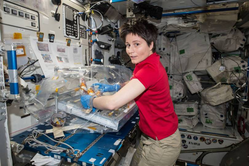 Woman in zero gravity conducting experiment, surrounded by equipment.