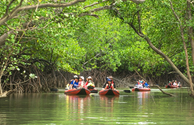 Tourists kayaking on a river
