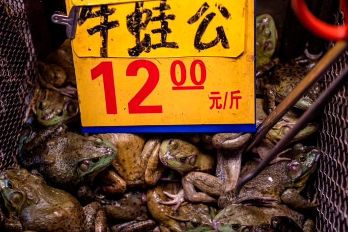 Sign in Chinese wet market