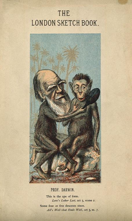 Charles Darwin, as an ape, holds a mirror up to another ape.