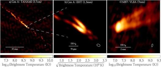 Radioastronomy images of black hole plasma jets