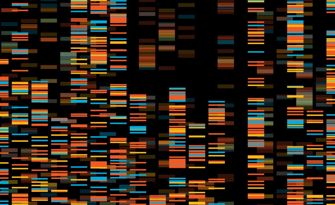 DNA visualisation with coloured bars