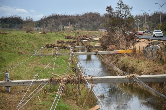 Power poles lying across a flooded ditch.