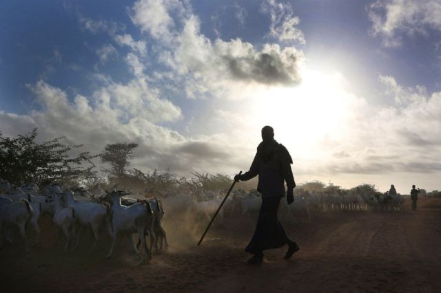 For Hundreds Of Years Dadaab Was Home Mainly To Nomadic Herders Who Drifted Across The
