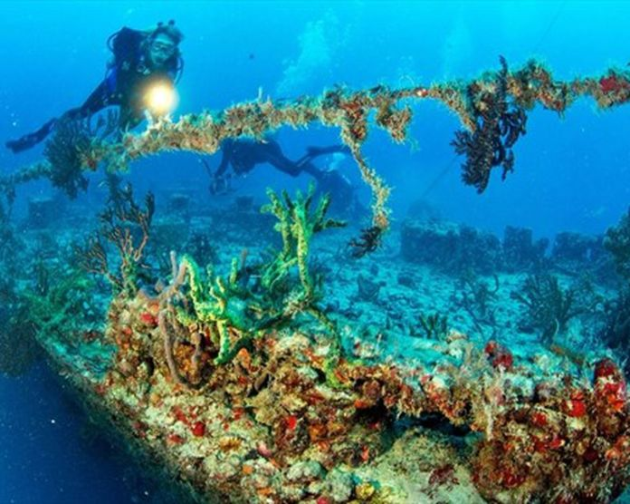 Divers mark 10th anniversary of retired navy ship as artificial reef in  Florida Keys | TheSpec.com