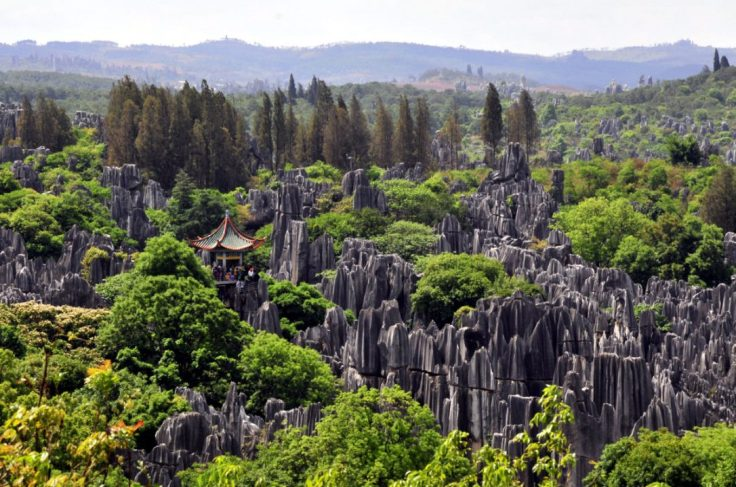 https://i1.wp.com/images.thestar.com/content/dam/thestar/life/travel/2016/01/12/our-reader-shares-her-photo-of-the-stone-forest-in-china/forest-photo.jpg.size-custom-crop.1086x0.jpg?w=736&ssl=1