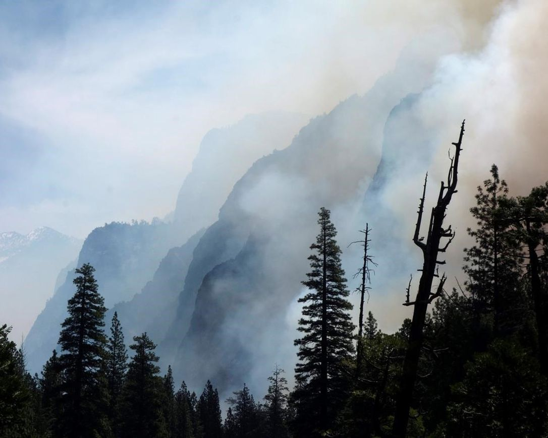 American Forest Fire Suppression
