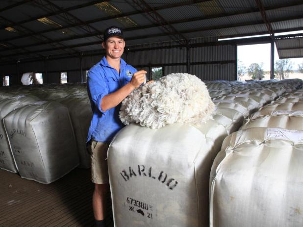 Timm House checks on the wool harvest under way at the Barloo woolshed.