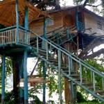 Riverside Treehouse In Dandeli Flat 15 Off