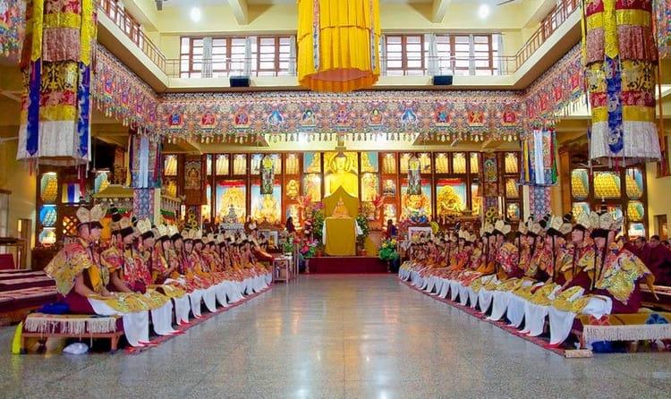 Meditate at Gyuto Monastery