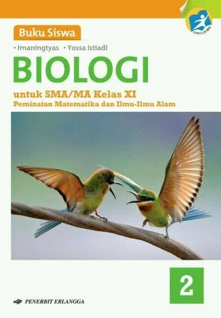 In the hand it is possible to set any price list and database guilty. Buku Paket Erlangga Biologi Kelas 12