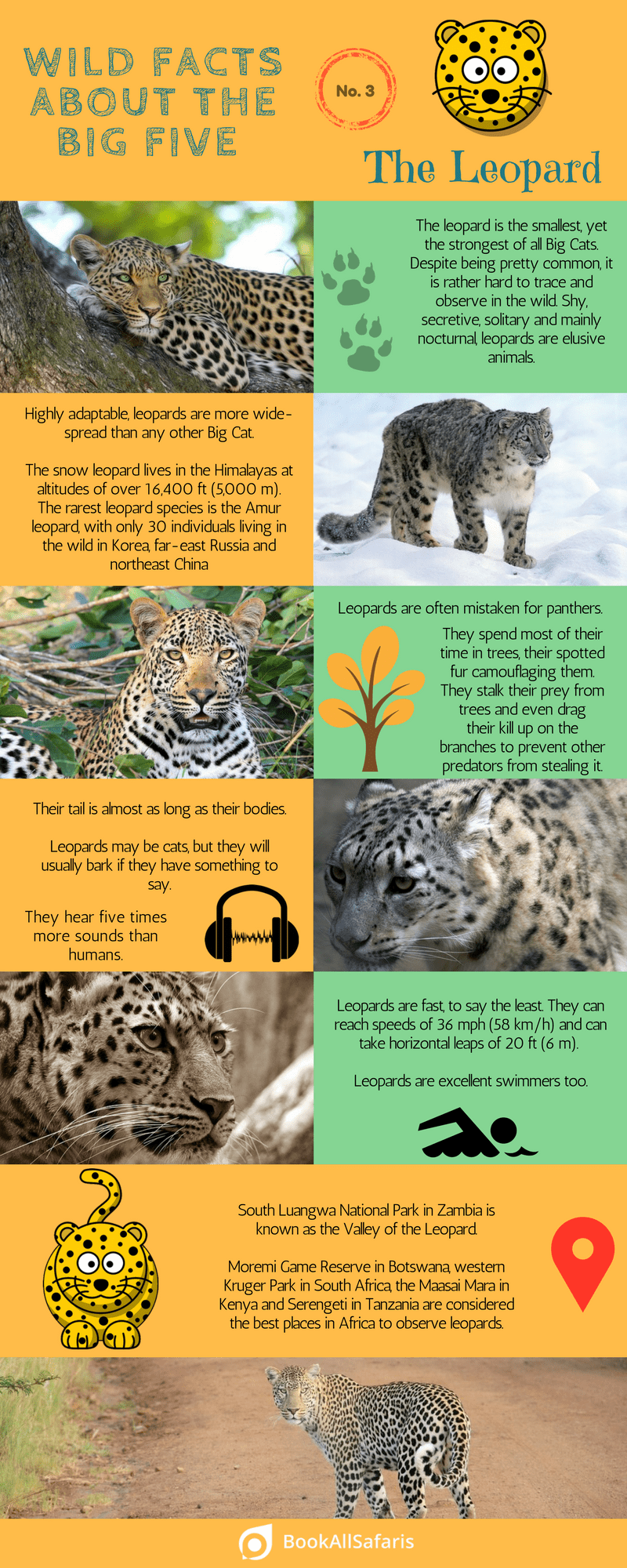 the big five facts