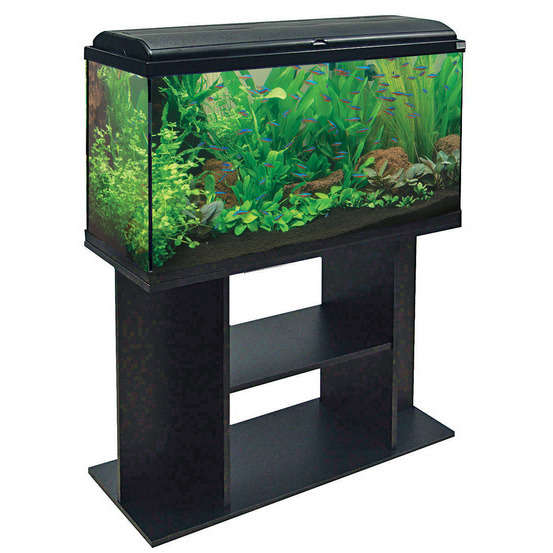 meuble d aquarium aquadisio 100 noir