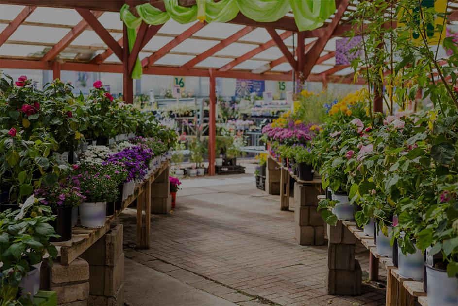 jardinerie avignon sorgues vaucluse