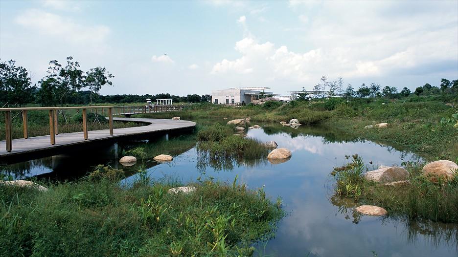 香港濕地公園 / 九龍旅行 エクスペディア