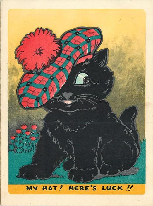 MY HAT HERES LUCK Black Cat Wears Large Scottish Tam Thistles In Background Left White