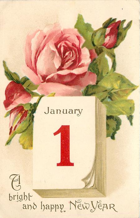 A BRIGHT AND HAPPY NEW YEAR pink rose open and two buds ...