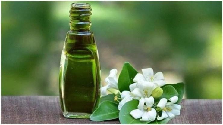 जैतून का तेल एंटी-इंफ्लेमेटरी गुणों से भरपूर होता है. ये आपके स्कैल्प को शांत कर सकता है. ये जलन से राहत दिला सकता है. जैतून का तेल आपके बालों को मजबूत और घना बनाने में मदद करता है.