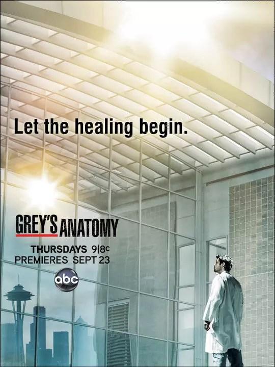 Grey's Anatomy Season 7 Posters: Choose Your Favorite ...