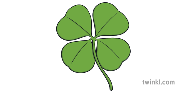 Four Leaf Clover Shamrock Illustration Twinkl