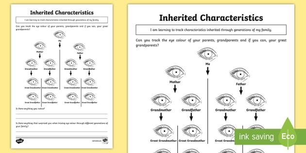 Inheritance Homework Worksheet Worksheet Teacher Made