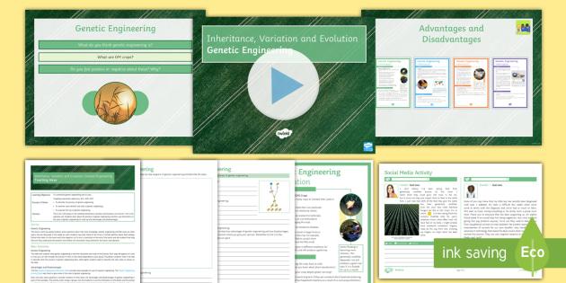 Biology Paper 2 Revision: AQA Inheritance, Variation and Evolution Lesson 13: Genetic Engineering
