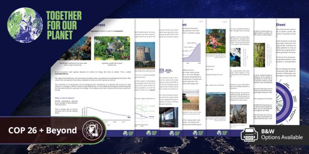 COP26: Climate Change Reading Comprehension Bundle Age 11+