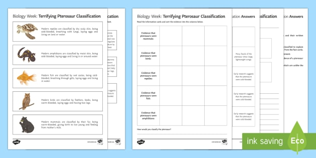 Terrifying Pterosaur Classification Worksheet Worksheets