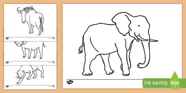 Free African Animal Coloring Sheets Teacher Made