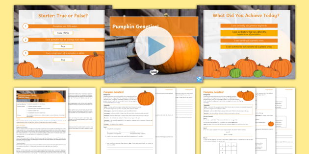 Halloween Secondary Resources: Halloween Inheritance: Pumpkin Genetics Lesson Pack