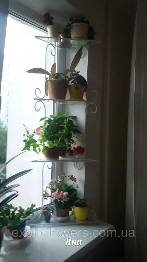 """Подставка для цветов на 4 полки """"Стеллаж оконный Яна-1 ..."""