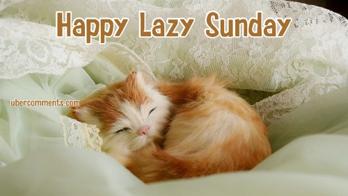 Lazy Sunday Funny Quote