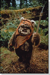 Wookiee Uncyclopedia The Content Free Encyclopedia