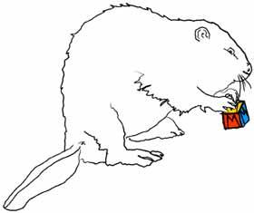 Beaver solving a Rubik's cube