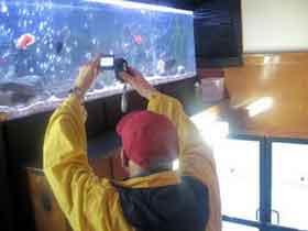 George Kuchar filming a fish tank