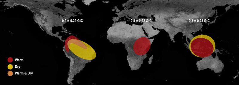 Области, в которых было замечено увеличение выбросов углекислого газа / фото NASA/JPL-Caltech