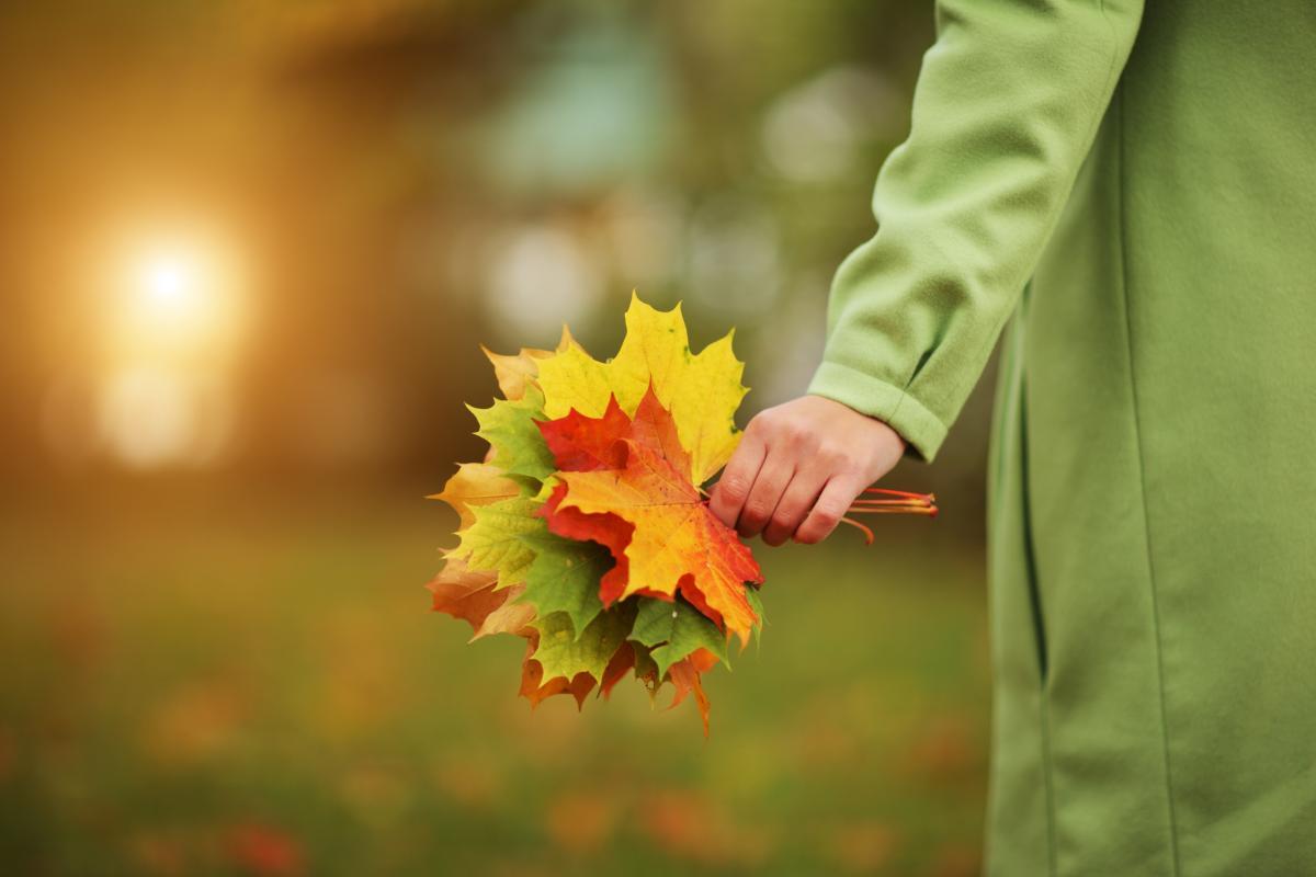 Погода сегодня - Прогноз погоды в Украине на 27 октября ...