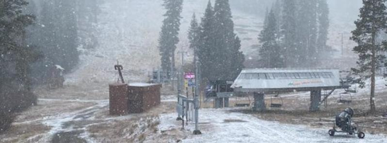 В Калифорнии выпал снег / Twitter
