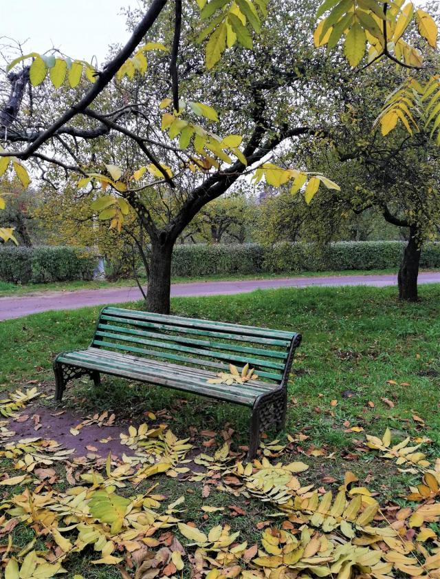 На ВДНХ теж є чимало місця для прогулянок / фото Марина Григоренко