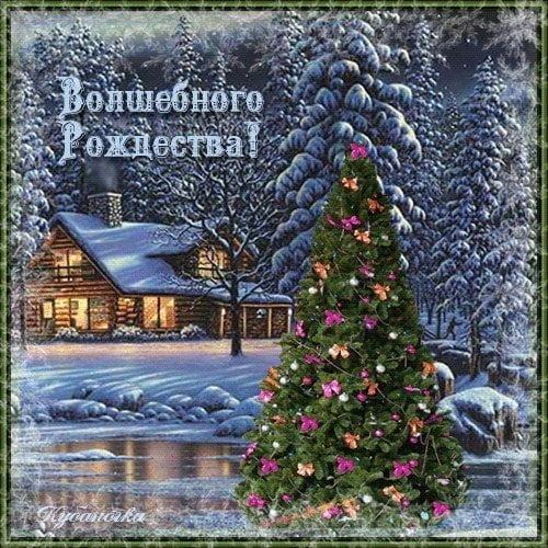 Рождество поздравления стихи / фото klike.net