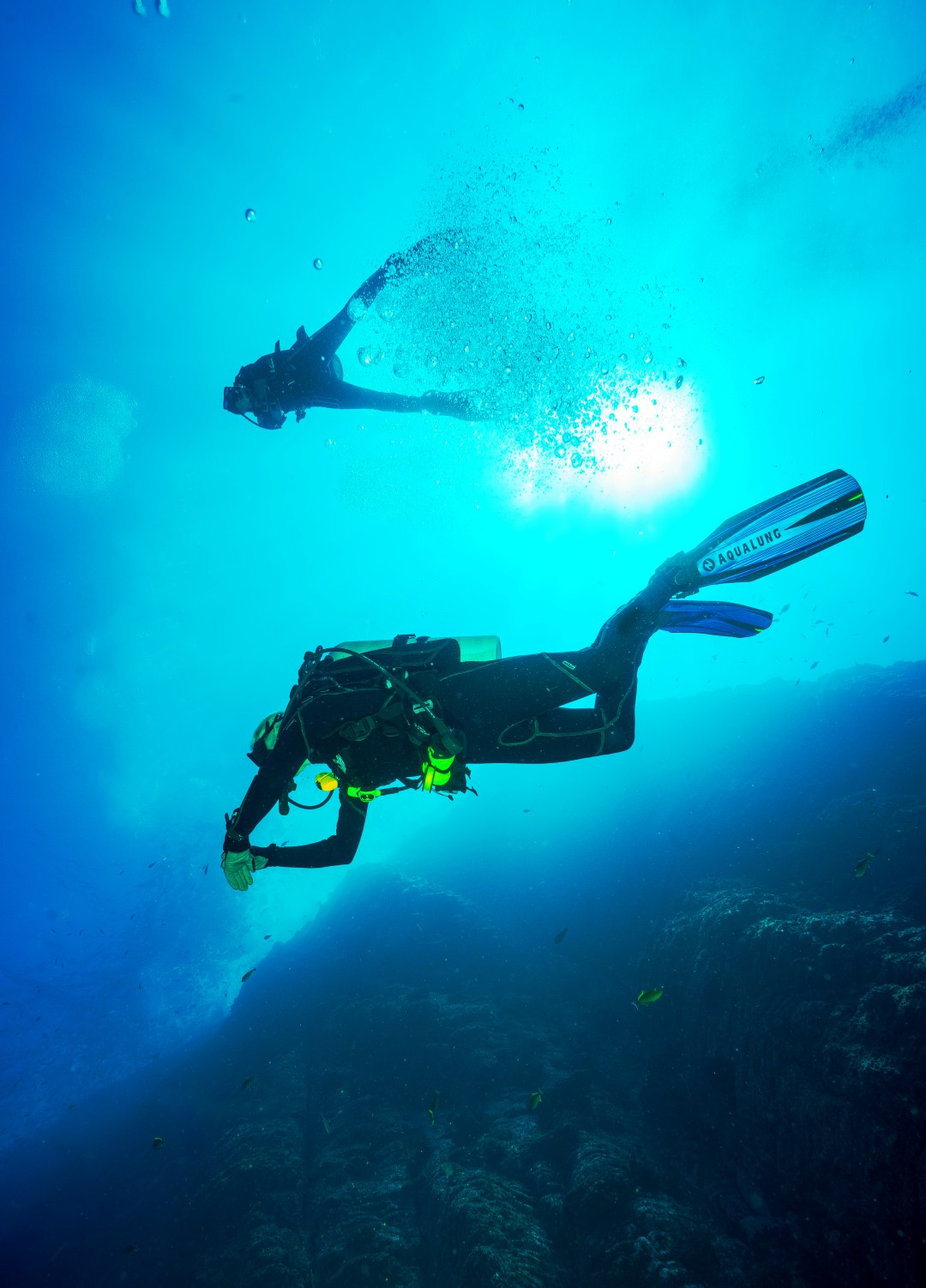 If You Read One Article About Scuba, Read This One